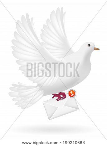 white pigeon bird sending white envelope letter