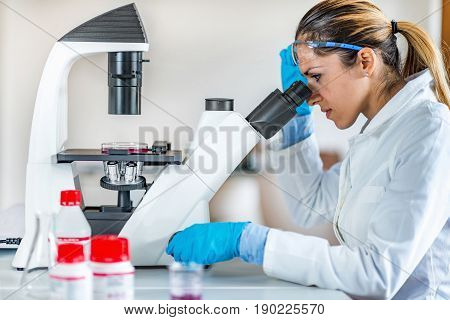 Researcher In Laboratory, Toned Image, Indoors, One Person Only