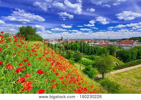 Idyllic meadow in city centre of Gdansk, Poland