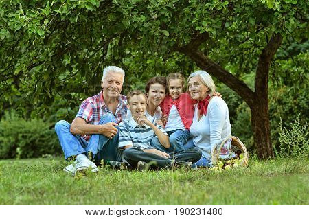 Portrait of big happy family resting outdoors