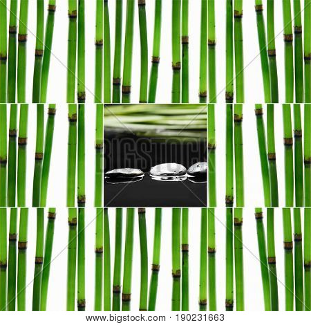 Still life with young bamboo sticks with leaf and d stones,