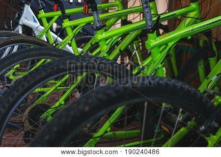 Bicycle rental for entertainment and outdoor recreation. Bicycles for cross-country trips. Bicycle parts close-up. Soft focus. Weekend in nature for the whole family.
