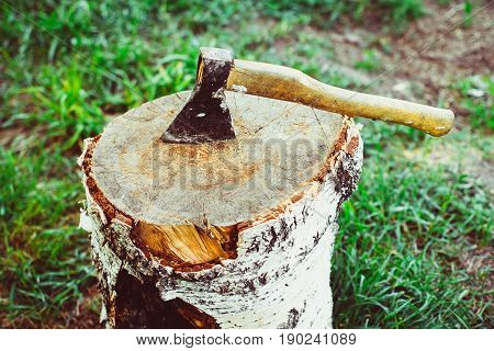 Ax in a log standing on a grass