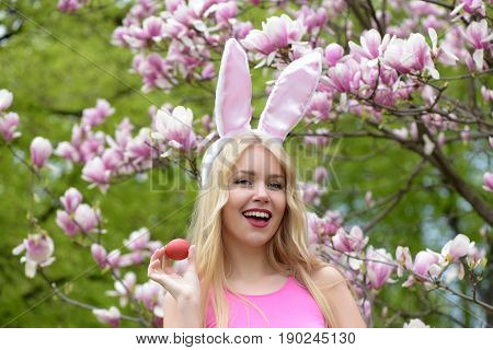 happy easter. Happy girl or pretty woman in rosy bunny ears on long blond hair laughing with red egg at magnolia tree with blossoming flowers on floral environment. Easter holidays celebration. Spring