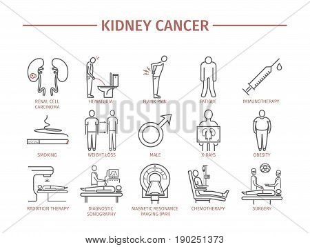 Kidney Cancer Symptoms. Causes. Diagnostics. Line icons set. Vector signs for web graphics.