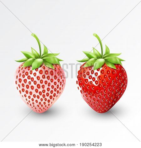 Strawberry and white strawberry pineberry, fruit, transparent, Vector