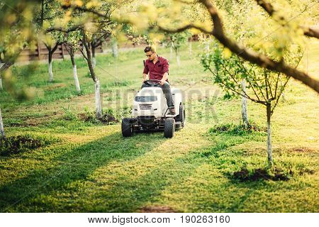 Gardening Works And Landscaping In Garden. Worker Mowing And Trimming Lawn, Grass