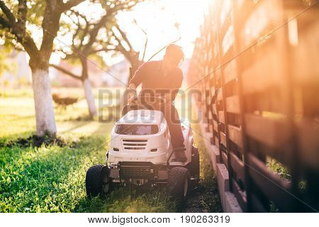 Male Riding Lawnmower And Cutting Grass During Sunset Golden Hour. Details Of Gardening With Sunrays