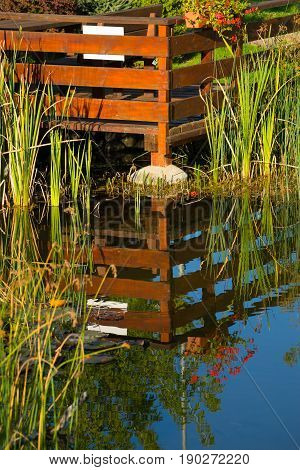 Lovely garden in water reflexion, lake with grass