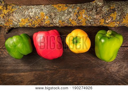 An overhead photo of vibrant colourful fresh bell peppers on a dark rustic background texture
