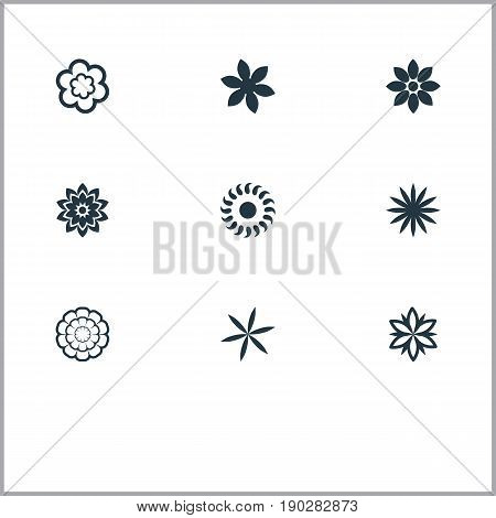 Vector Illustration Set Of Simple Flower Icons. Elements Aster, Camomile, Helianthus And Other Synonyms Marguerite, Dahlia And Laurel.