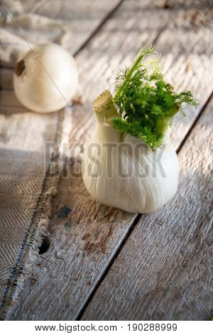 Fennel And White Onion On Rustic Napkin