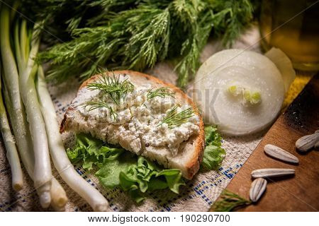 Fennel, White Onion, Lettuce, Olive Oil, Bread And Cheese