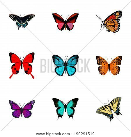 Realistic Danaus Plexippus, Copper, Sangaris And Other Vector Elements. Set Of Beauty Realistic Symbols Also Includes Hairstreak, Julia, Orange Objects.