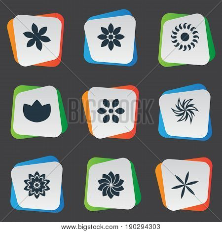 Vector Illustration Set Of Simple Rose Icons. Elements Aster, Crocus, Laurel And Other Synonyms Marguerite, Sunflower And Peony.