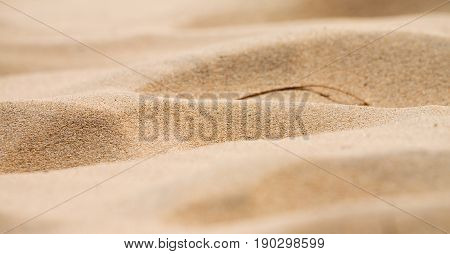 In   The Coastline Beach Abstract  Sand