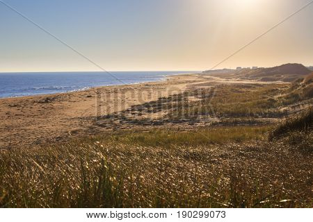 Sunlit rural beaches on the north shore of Prince Edward Island, Canada.