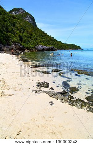 Asia     Bay The  Koh Phangan  T   Thailand   South China   Sea