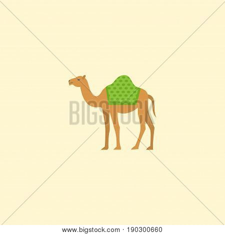 Flat Icon Camel Element. Vector Illustration Of Flat Icon Dromedary Isolated On Clean Background. Can Be Used As Camel, Dromedary And Hump Symbols.