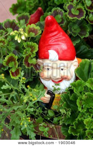 Travelling Gnome / Garden Doll