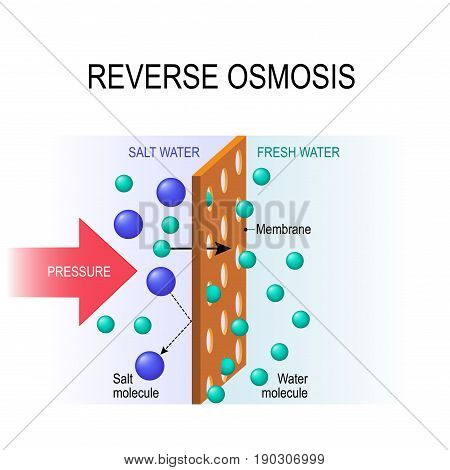 reverse osmosis. Desalination. The pressure water molecules seep through the semi-permeable membrane.