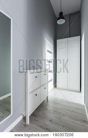 Gray Entryway With Wardrobe