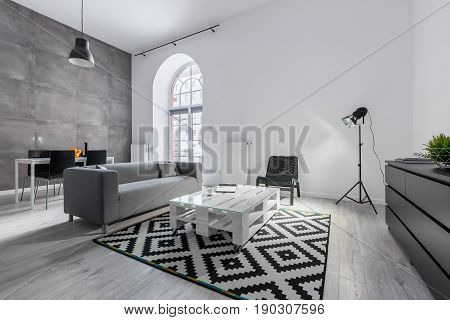 Loft Apartment In Gray