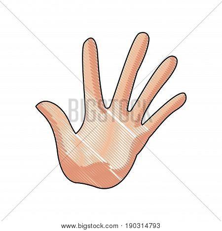 hand man palm showing five finger gesture image vector illustration