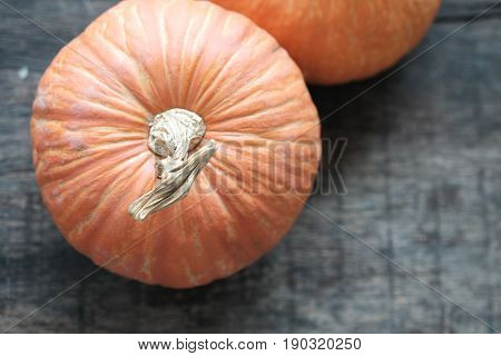 Isolated Orange Pumpkin