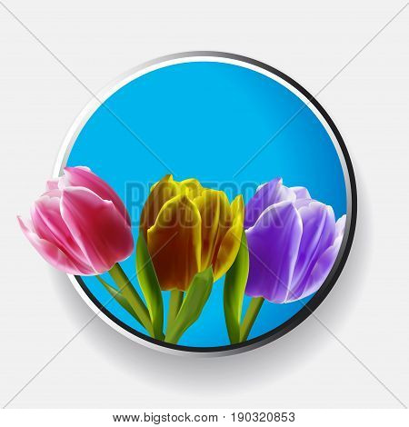 3D Illustration of Trio of Pink Yellow and Purple Tulips Over Metallic and Blue Border With Shadow