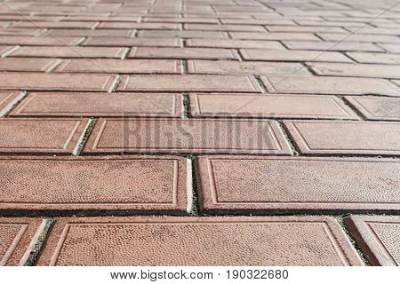 Clay Pavers-colour Red Color With Moss Closeup