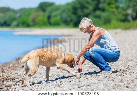 Mature Woman With Labrador Riverside