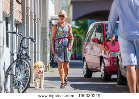 Woman Walking With A Dog In The City