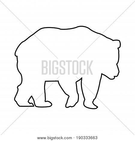 bear animal forest wild life image vector illustration