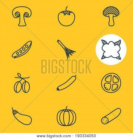 Vector Illustration Of 12 Food Icons. Editable Pack Of Mushroom, Aubergine, Cauliflower And Other Elements.