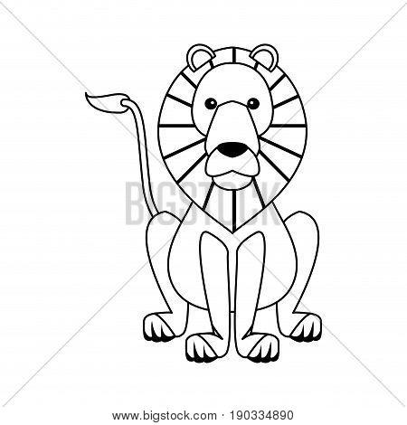 lion sits dangerous predator animal vector illustration
