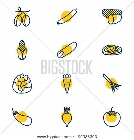 Vector Illustration Of 12 Vegetables Icons. Editable Pack Of Tuber, Aubergine, Maize And Other Elements.