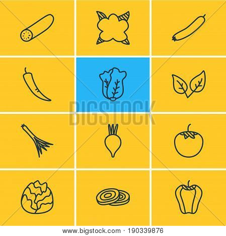 Vector Illustration Of 12 Food Icons. Editable Pack Of Cauliflower, Peppermint, Cole And Other Elements.