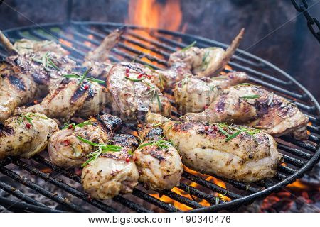 Spicy Chicken On Grill With Spices And Rosemary For Grill
