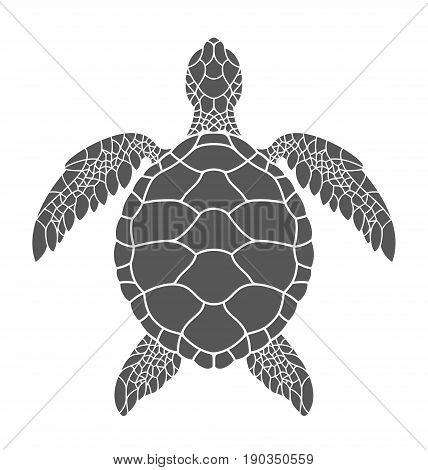 Sea turtle. Abstract turtle on white background