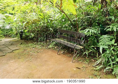 Old iron bench in garden on the park