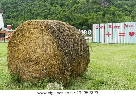 Swiss Sheep Farm Cha-am Thailand- May 29 2017: Dried grass roll for sheeps and horses in Swiss Sheep Farm Cha-am Thailand.