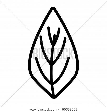 line natural leaf to ecology preservation icon vector illustration