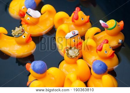 Rubber yellow duck toy in the paddling pool