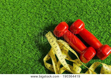 red dumbbell on green grass. top view