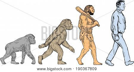 Drawing sketch style illustration showing human evolution from primate ape homo habilis homo erectus to modern day human homo sapien walking viewed from the side set on isolated white background.