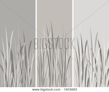3 Gray Pannels With Flowers Background