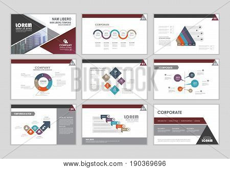 Layout brochure design brochure template for business presentation brochure annual report brochure business flyer and leaflet cover with infographic elements graphs and charts. Infographic brochure elements for business data visualization. Vector format.