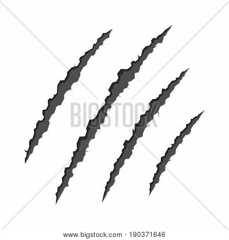 Claws Scratching Animal on White Background. Vector