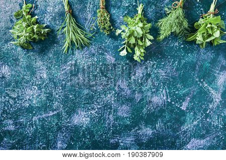 Fresh cilantro, tarragon, dill, oregano, thyme and lemon balm potherbs over dark blue spotty background. Top view